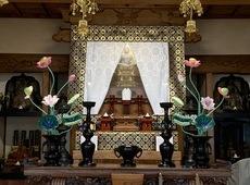 極彩色 常花 納品 (愛媛県東温市)